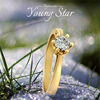 youngStar2013 brochure